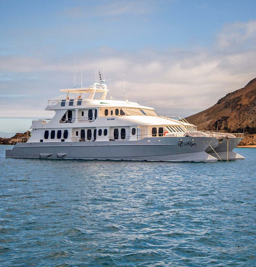 Alya Luxury Catamaran - Galapagos Cruises