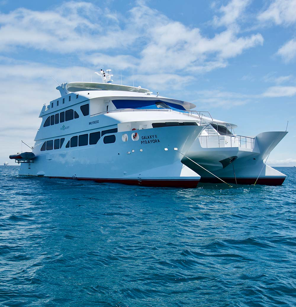 EcoGalaxy Catamaran - First Class Cruise - Galapagos
