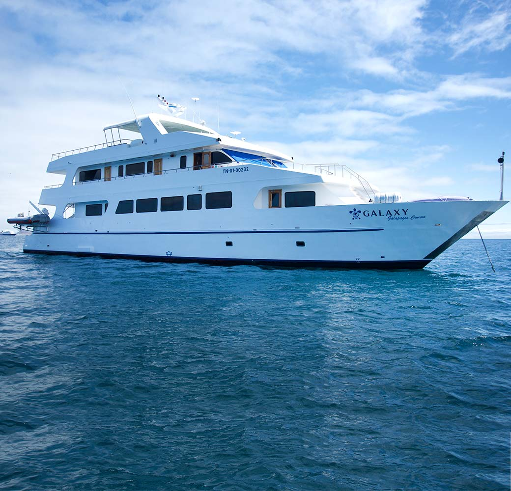 Galaxy YAcht - First Class Cruise - Galapagos