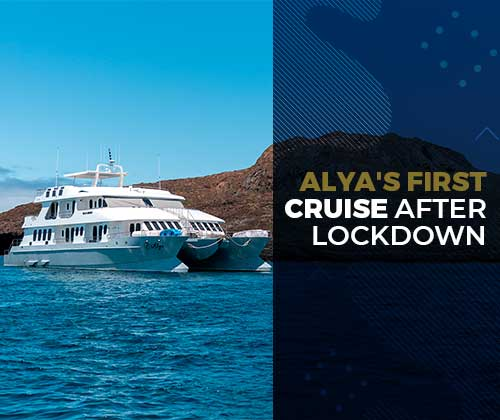 Alya cruise after